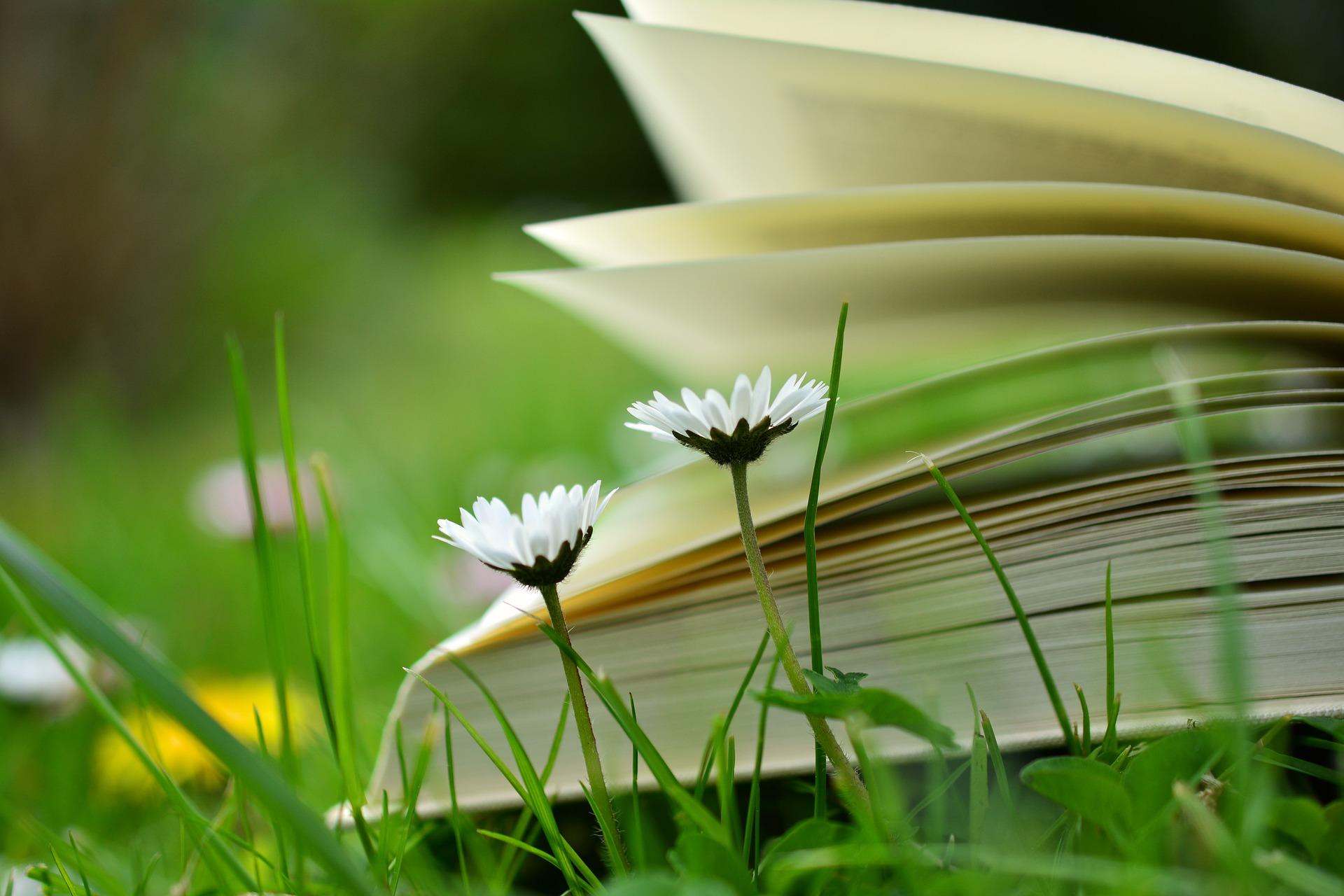 verschillende manieren van lezen