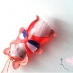 vingerpop van wk hamster