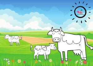 project de boerderij