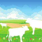 thema boerderij kleikaart