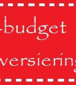 8 tips voor een low-budget kerstversiering!